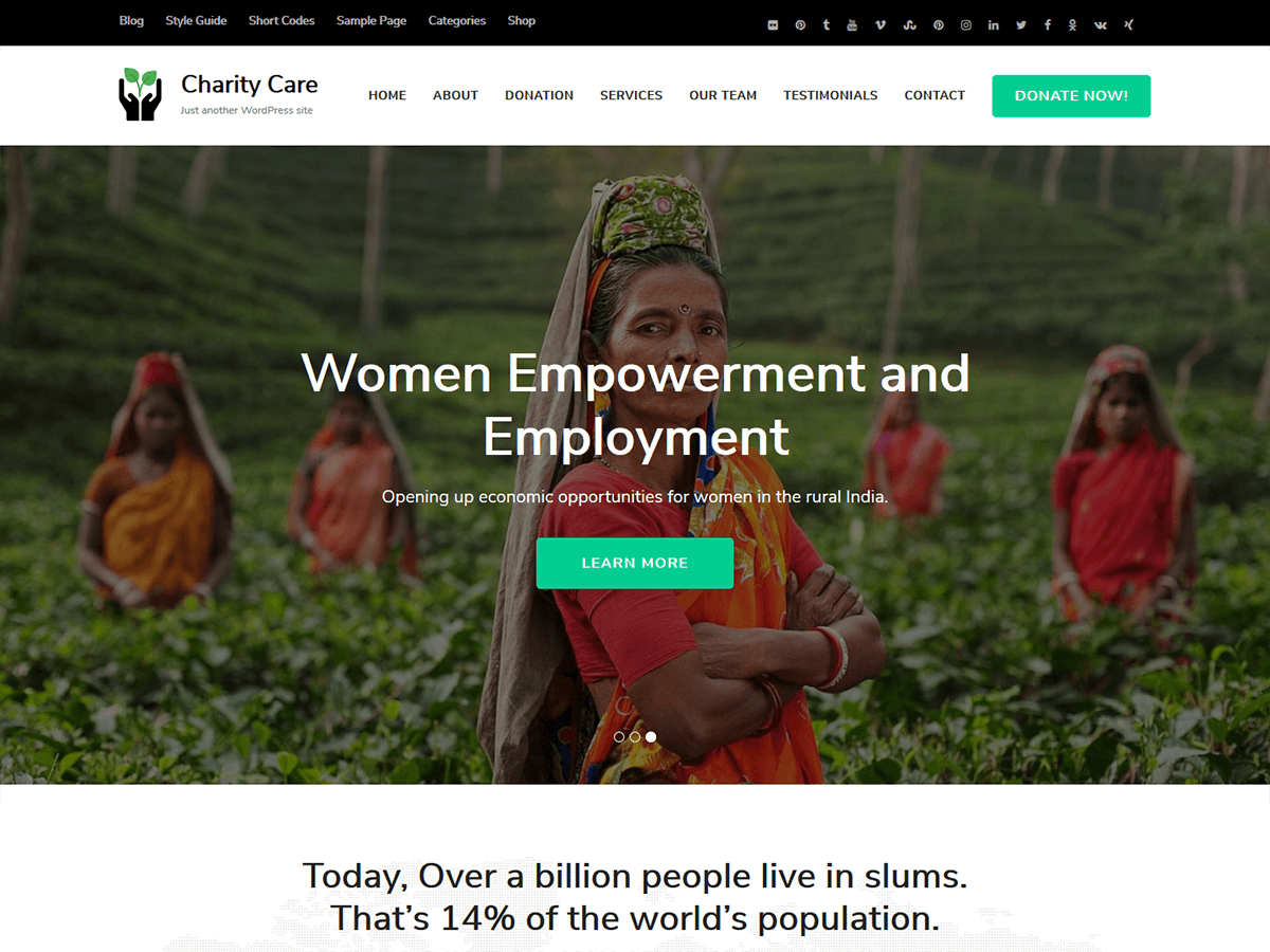 Charity Care Preview Wordpress Theme - Rating, Reviews, Preview, Demo & Download