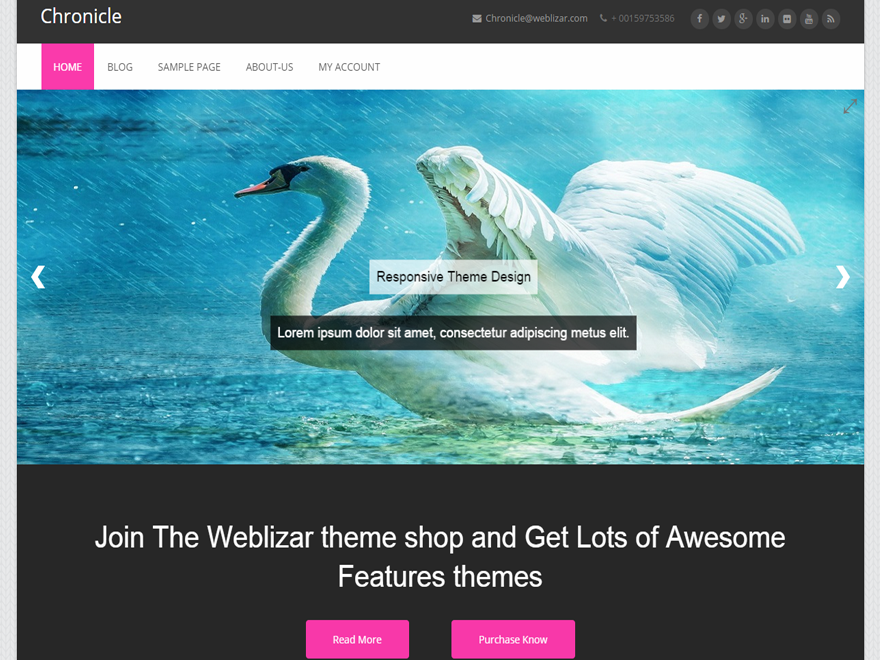 Chronicle Preview Wordpress Theme - Rating, Reviews, Preview, Demo & Download