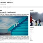 Codium Extend