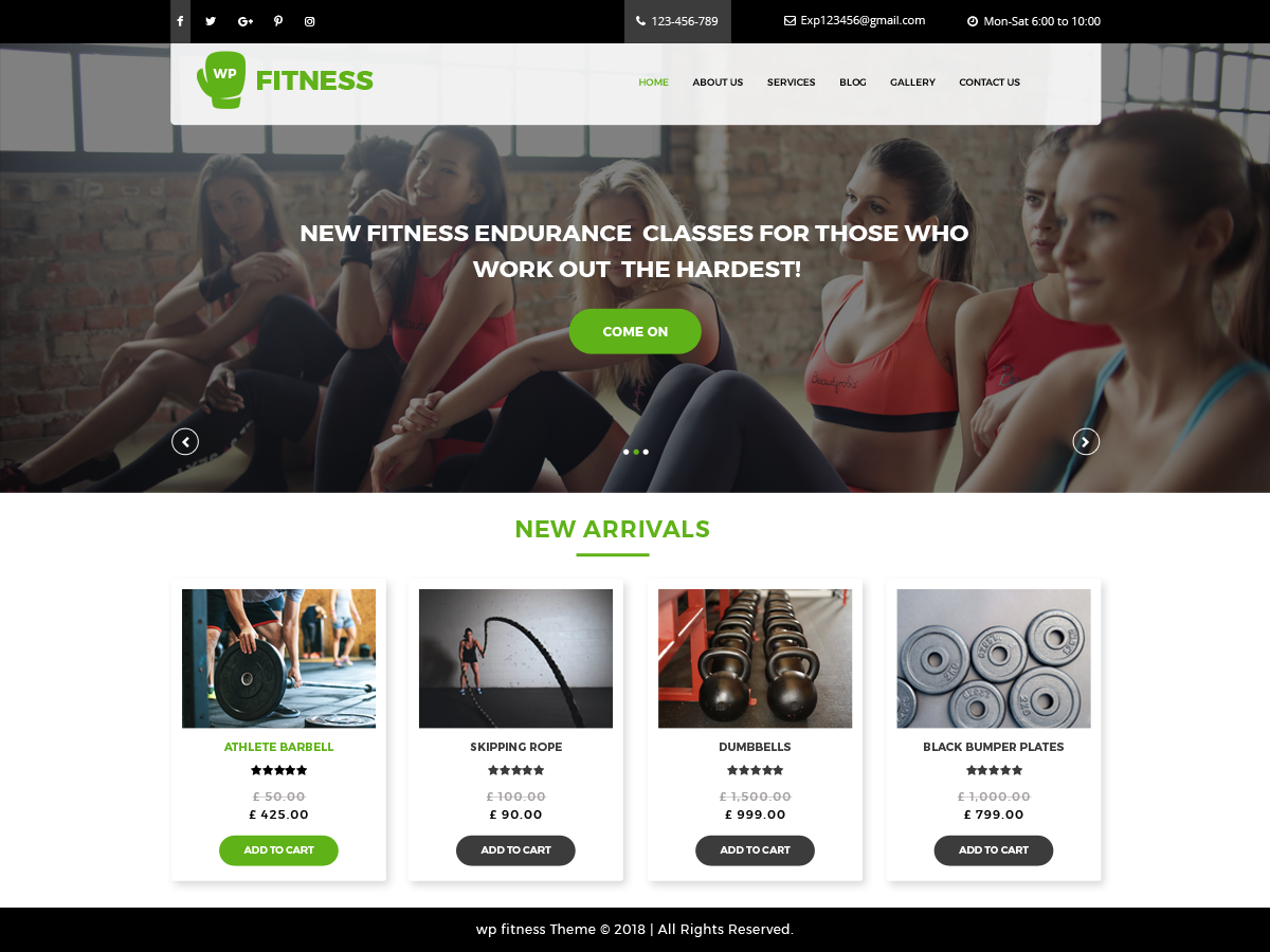 Core Fitness Preview Wordpress Theme - Rating, Reviews, Preview, Demo & Download