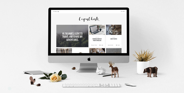 CorpusChristi Preview Wordpress Theme - Rating, Reviews, Preview, Demo & Download