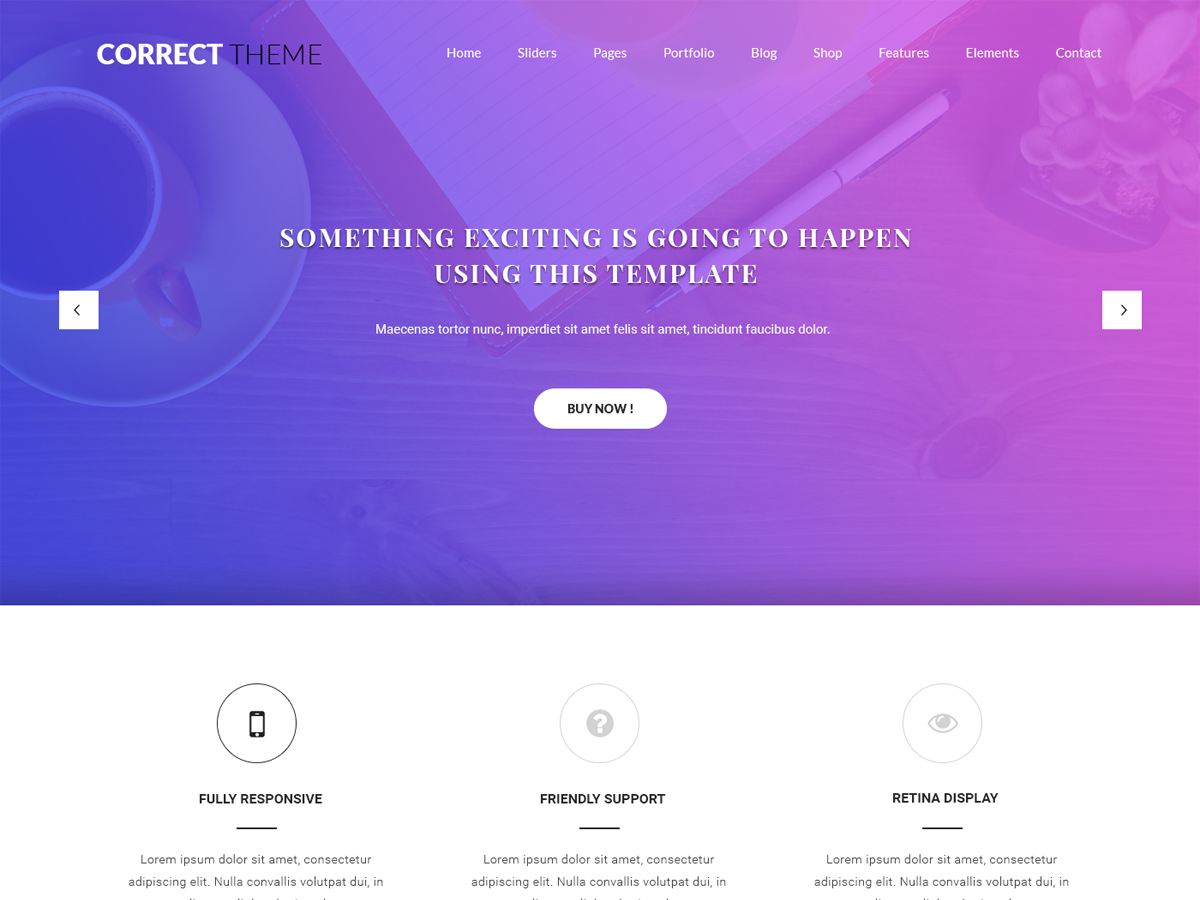 Correct Lite Preview Wordpress Theme - Rating, Reviews, Preview, Demo & Download