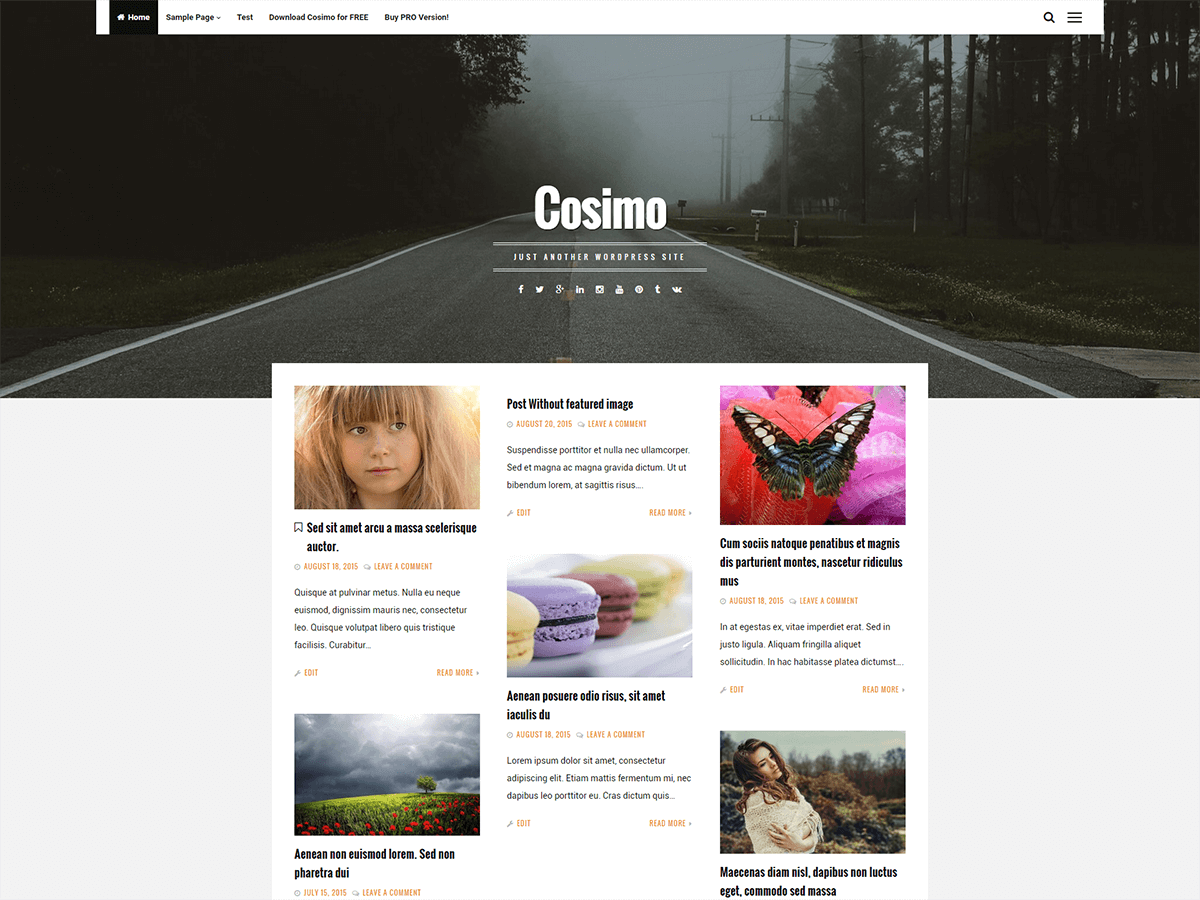 Cosimo Preview Wordpress Theme - Rating, Reviews, Preview, Demo & Download