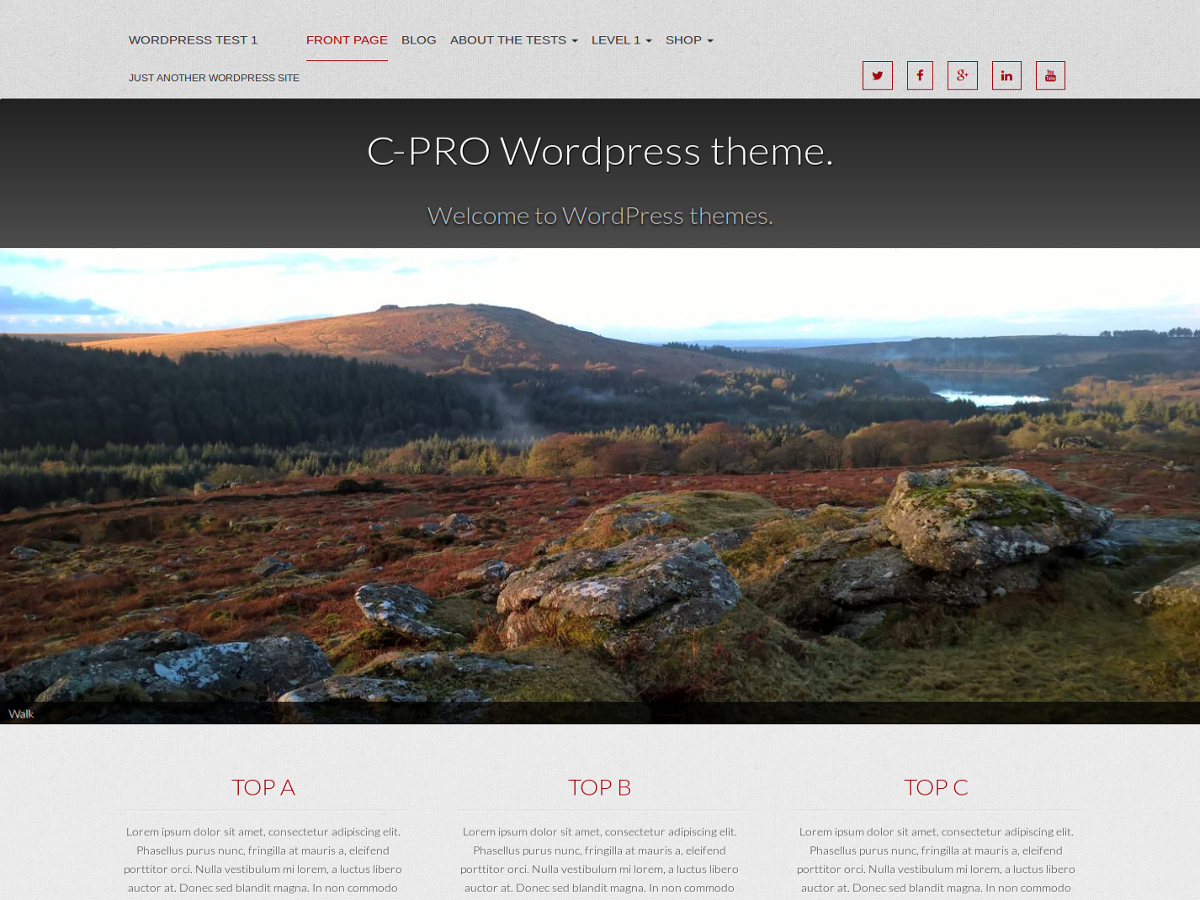 Cpro Preview Wordpress Theme - Rating, Reviews, Preview, Demo & Download