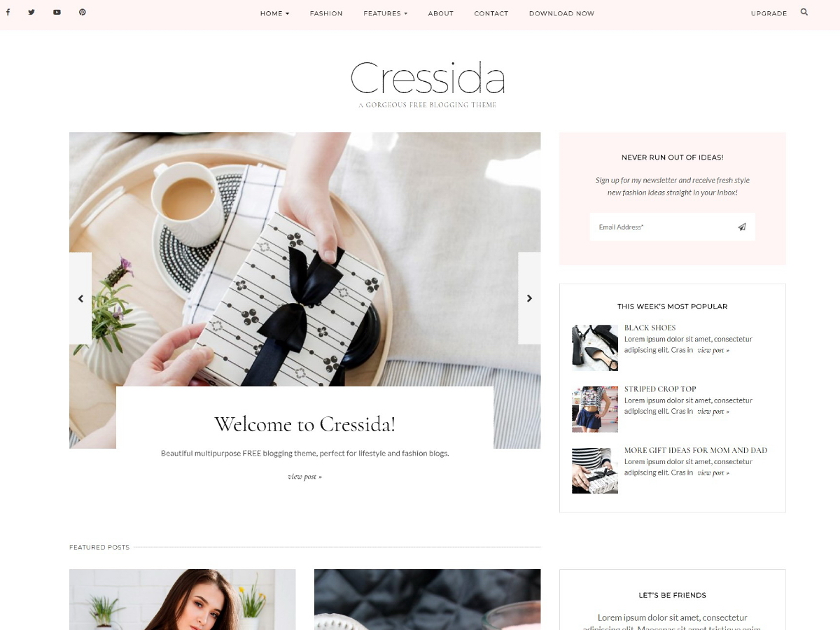 Cressida Preview Wordpress Theme - Rating, Reviews, Preview, Demo & Download