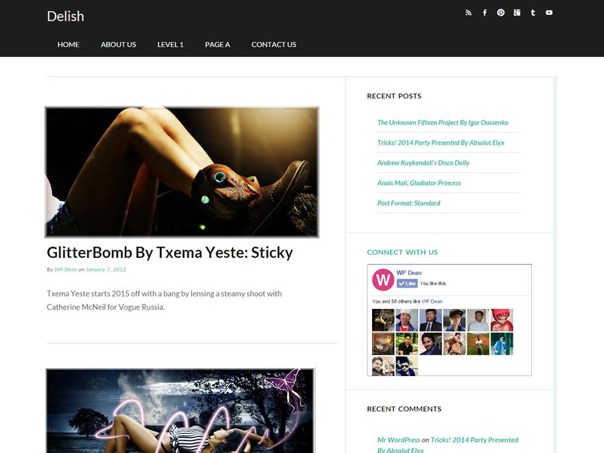 Delish Preview Wordpress Theme - Rating, Reviews, Preview, Demo & Download