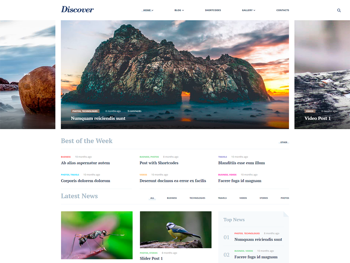 Discover RW Preview Wordpress Theme - Rating, Reviews, Preview, Demo & Download