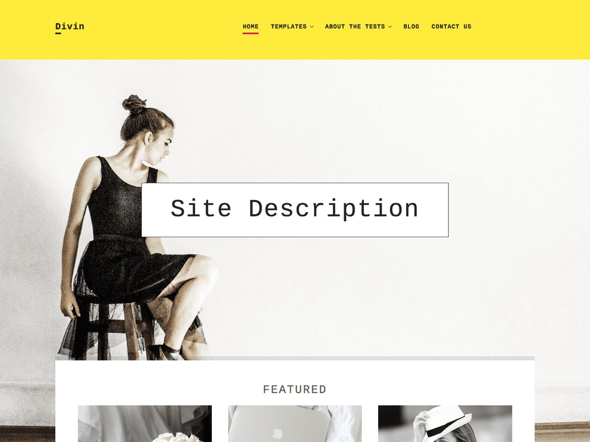 Divin Preview Wordpress Theme - Rating, Reviews, Preview, Demo & Download