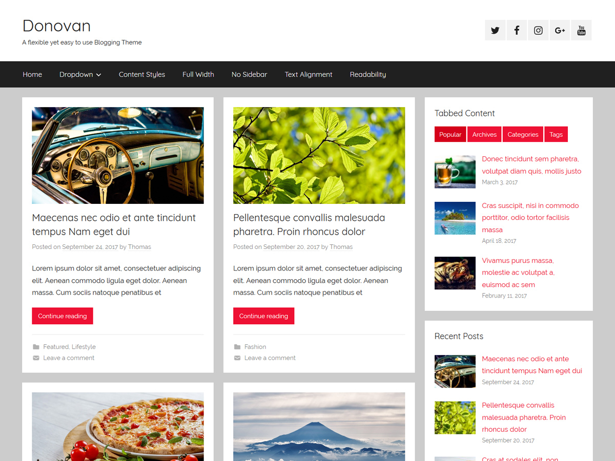Donovan Preview Wordpress Theme - Rating, Reviews, Preview, Demo & Download