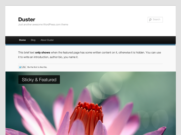 Duster Preview Wordpress Theme - Rating, Reviews, Preview, Demo & Download
