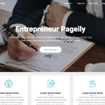 Entrepreneur Pageily