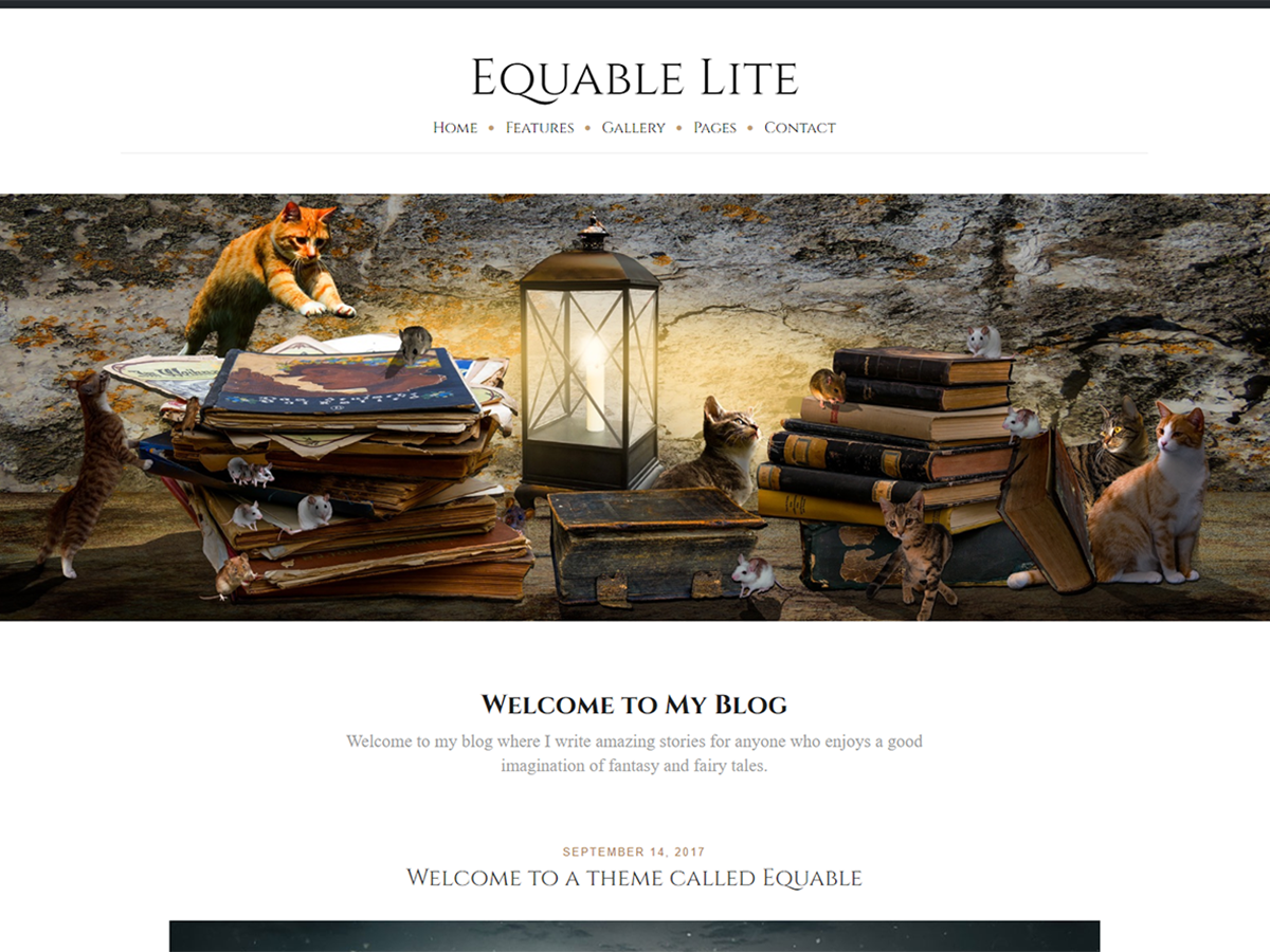 Equable Lite Preview Wordpress Theme - Rating, Reviews, Preview, Demo & Download