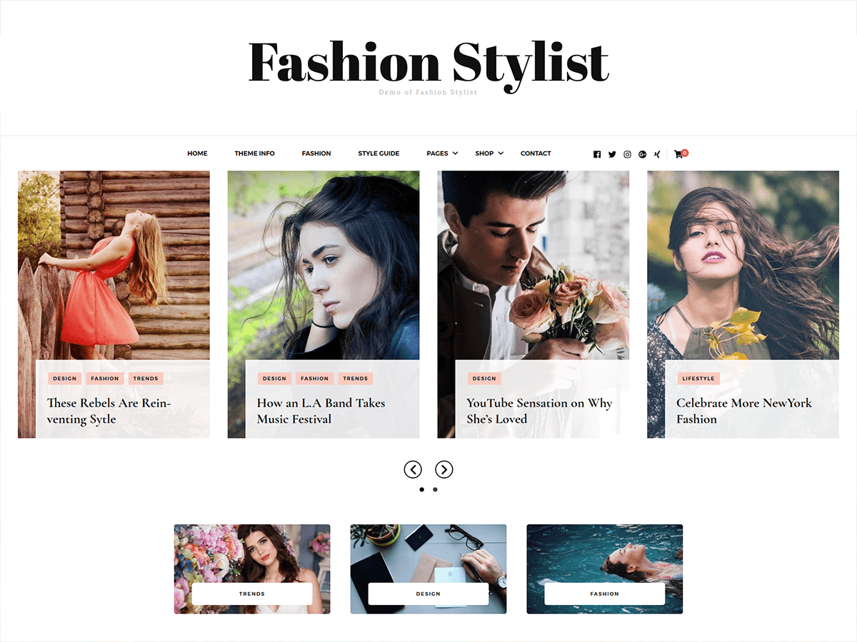 Fashion Stylist Preview Wordpress Theme - Rating, Reviews, Preview, Demo & Download