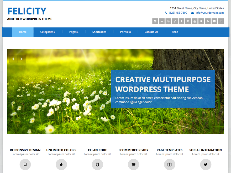 Felicity Preview Wordpress Theme - Rating, Reviews, Preview, Demo & Download