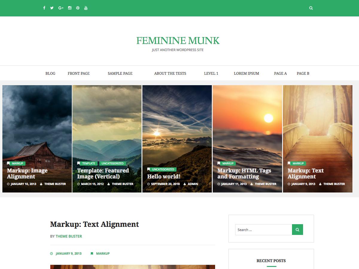 Feminine Munk Preview Wordpress Theme - Rating, Reviews, Preview, Demo & Download