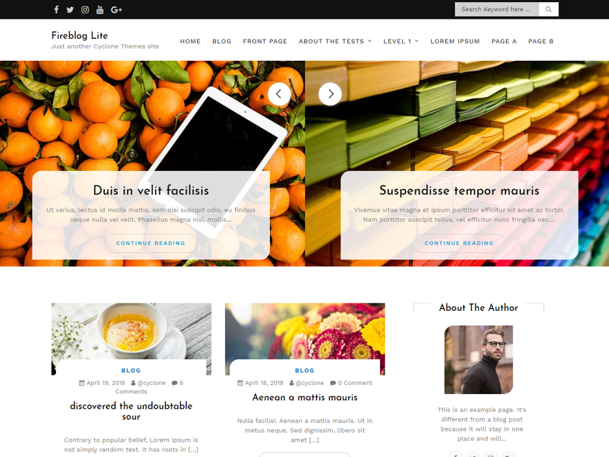 Fire Blog Preview Wordpress Theme - Rating, Reviews, Preview, Demo & Download