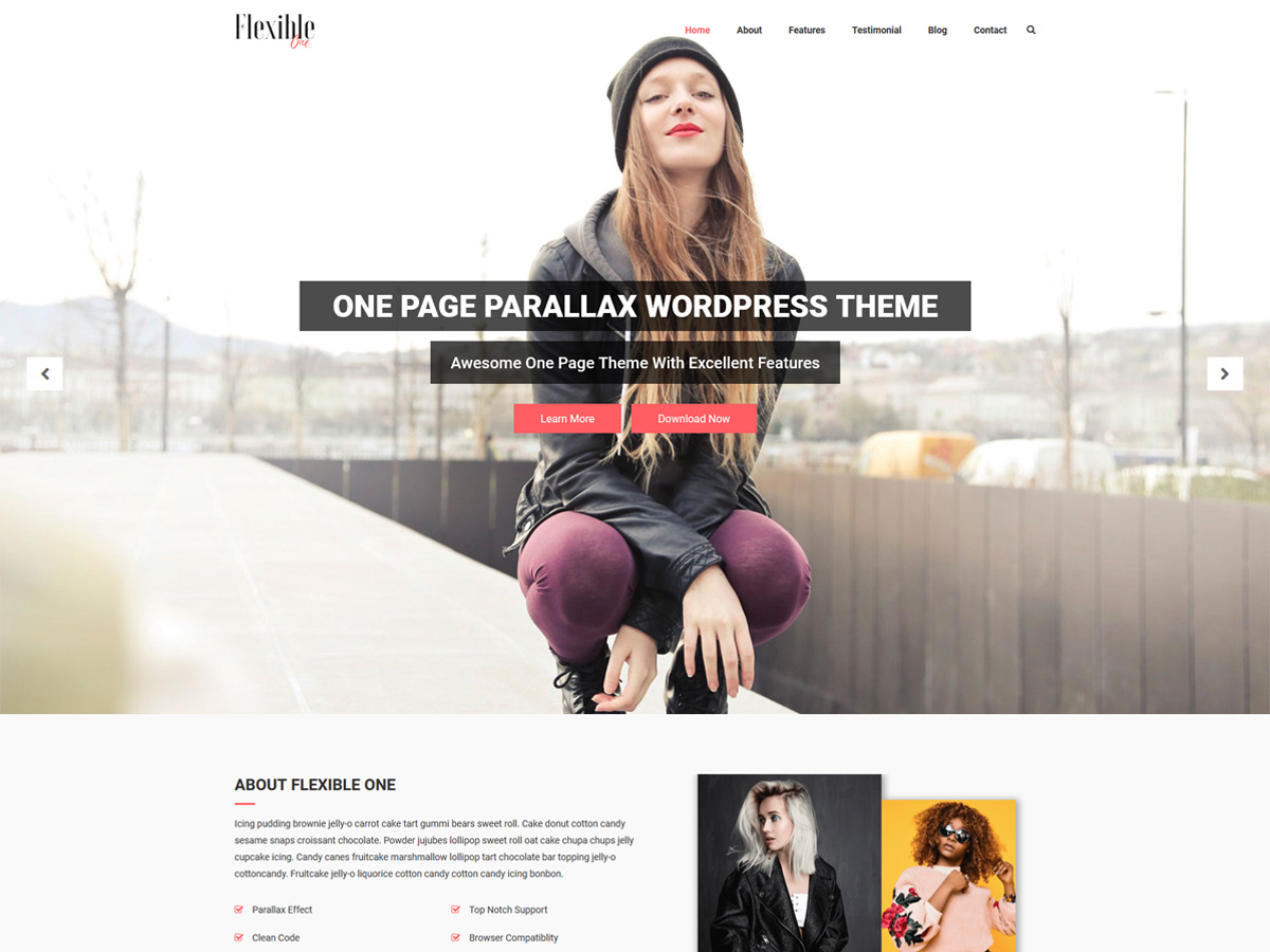 Flexible One Preview Wordpress Theme - Rating, Reviews, Preview, Demo & Download