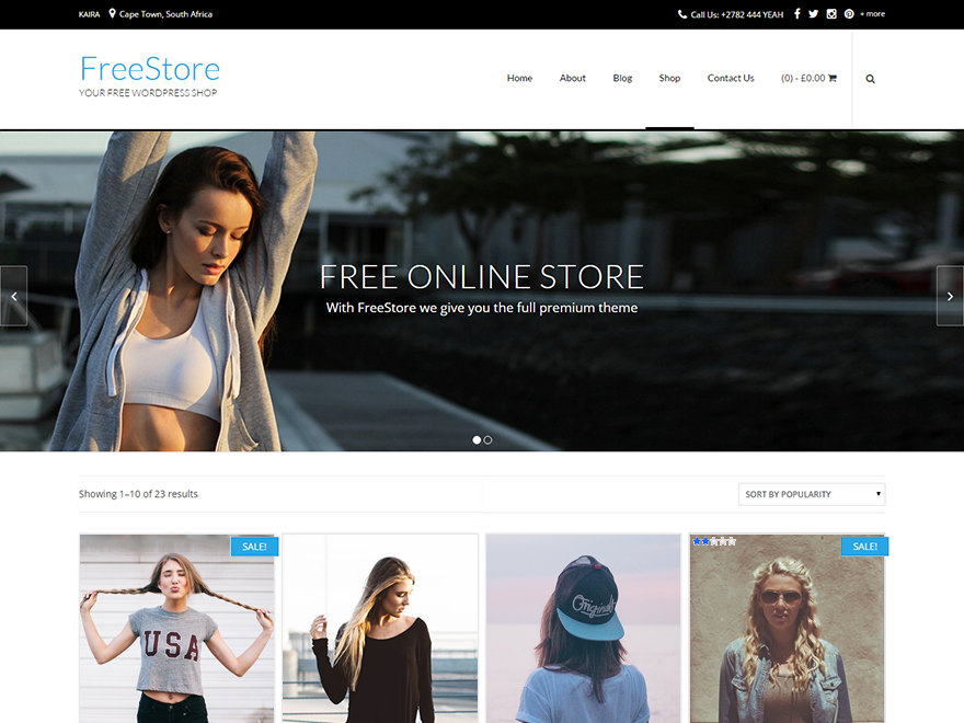 FreeStore Preview Wordpress Theme - Rating, Reviews, Preview, Demo & Download