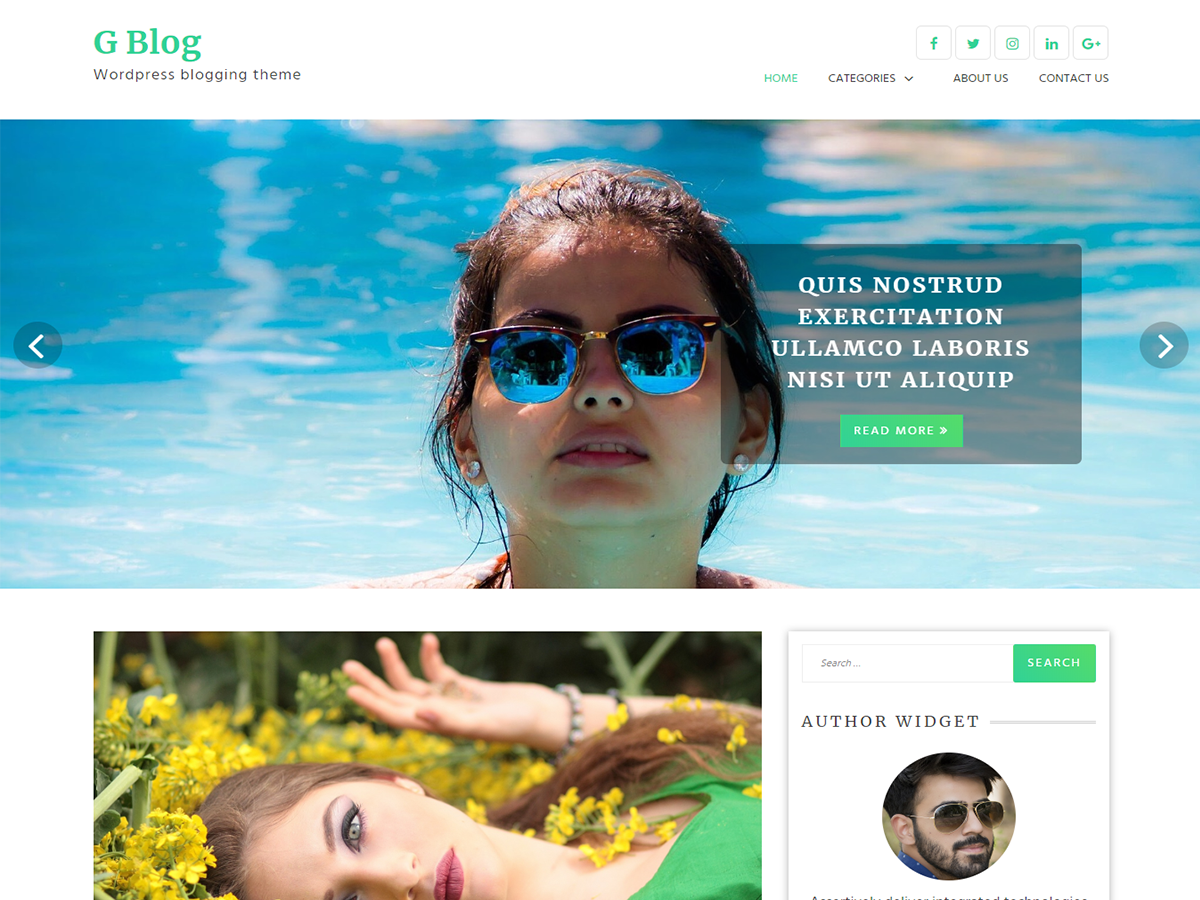 G Blog Preview Wordpress Theme - Rating, Reviews, Preview, Demo & Download