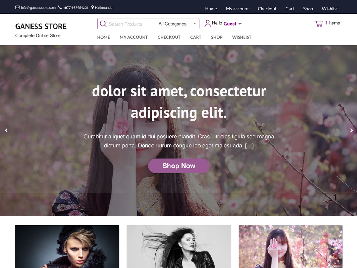Ganess Store Preview Wordpress Theme - Rating, Reviews, Preview, Demo & Download