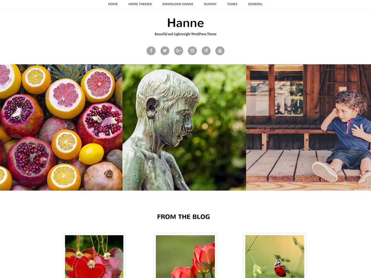 Hanne Preview Wordpress Theme - Rating, Reviews, Preview, Demo & Download