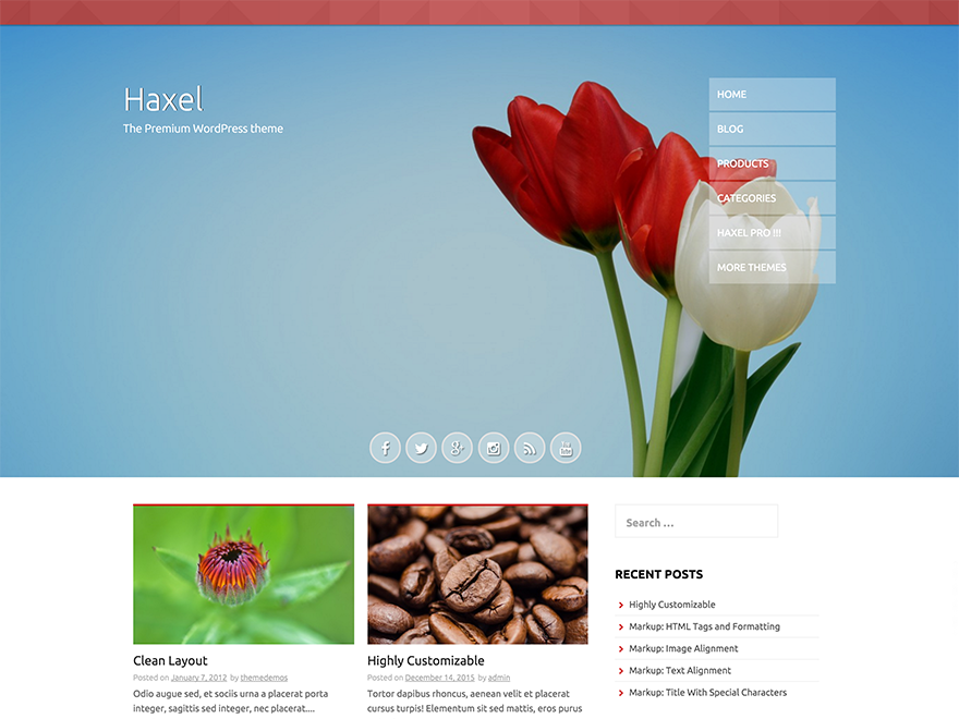 Haxel Preview Wordpress Theme - Rating, Reviews, Preview, Demo & Download