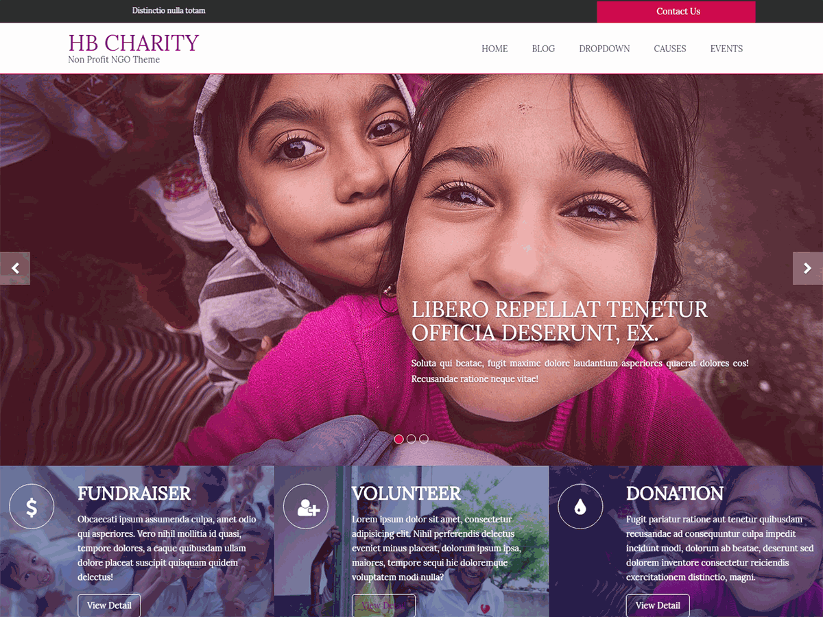 HB CHARITY Preview Wordpress Theme - Rating, Reviews, Preview, Demo & Download