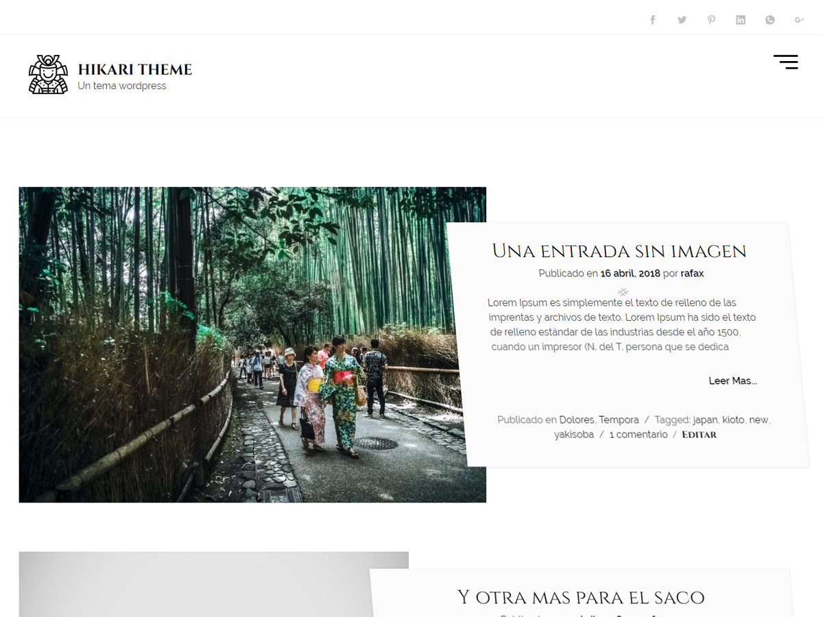 Hikaru Preview Wordpress Theme - Rating, Reviews, Preview, Demo & Download