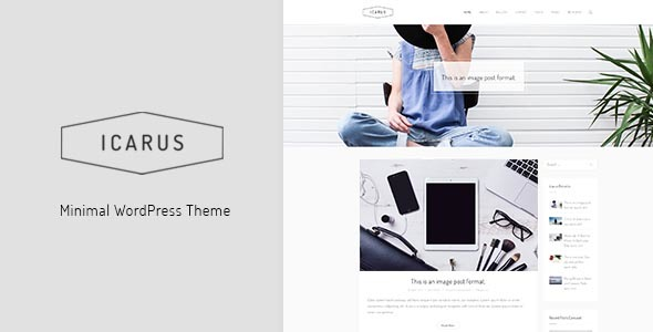 Icarus Preview Wordpress Theme - Rating, Reviews, Preview, Demo & Download