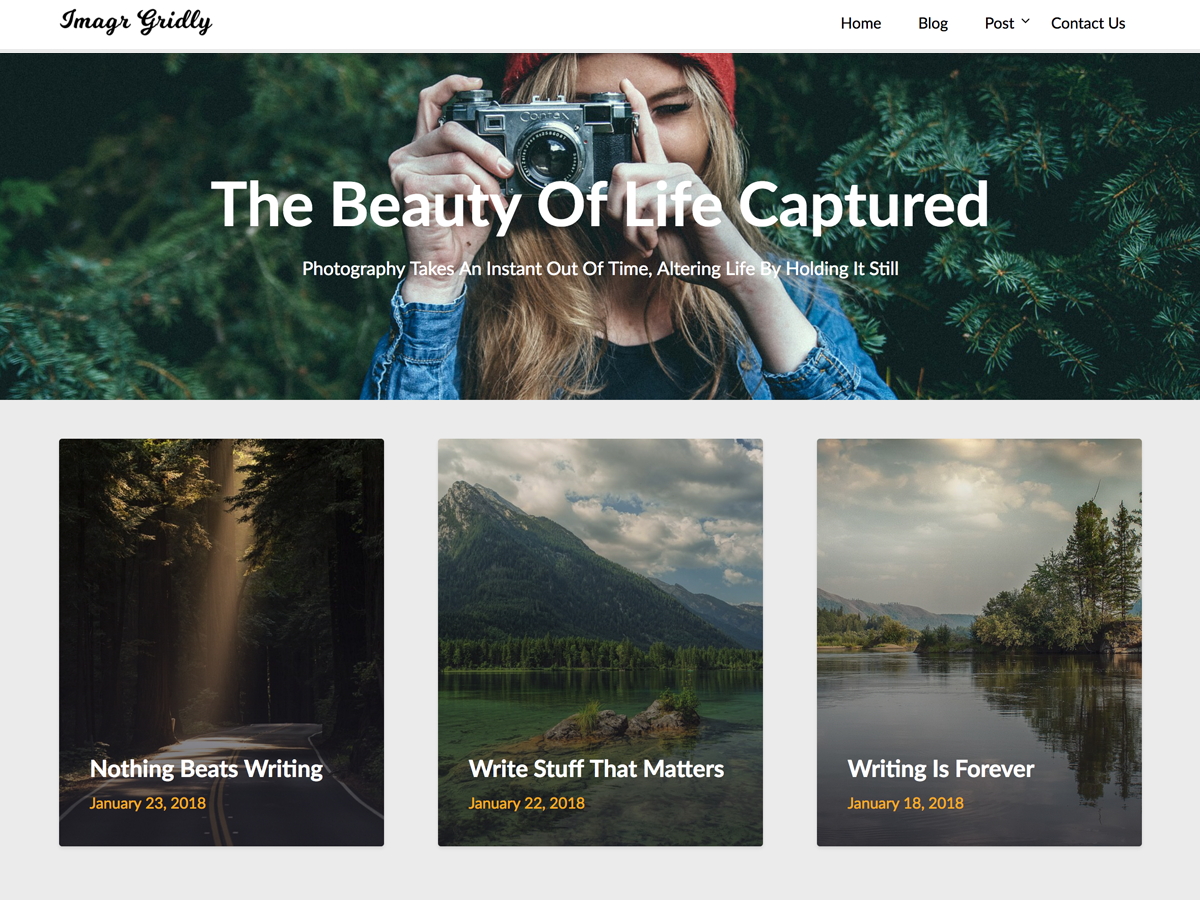ImageGridly Preview Wordpress Theme - Rating, Reviews, Preview, Demo & Download