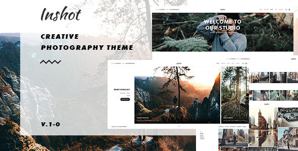 Inshot Preview Wordpress Theme - Rating, Reviews, Preview, Demo & Download