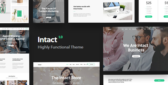 Intact Preview Wordpress Theme - Rating, Reviews, Preview, Demo & Download