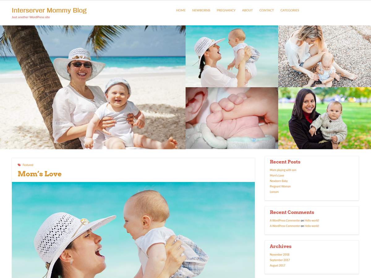 Interserver Mommy Preview Wordpress Theme - Rating, Reviews, Preview, Demo & Download