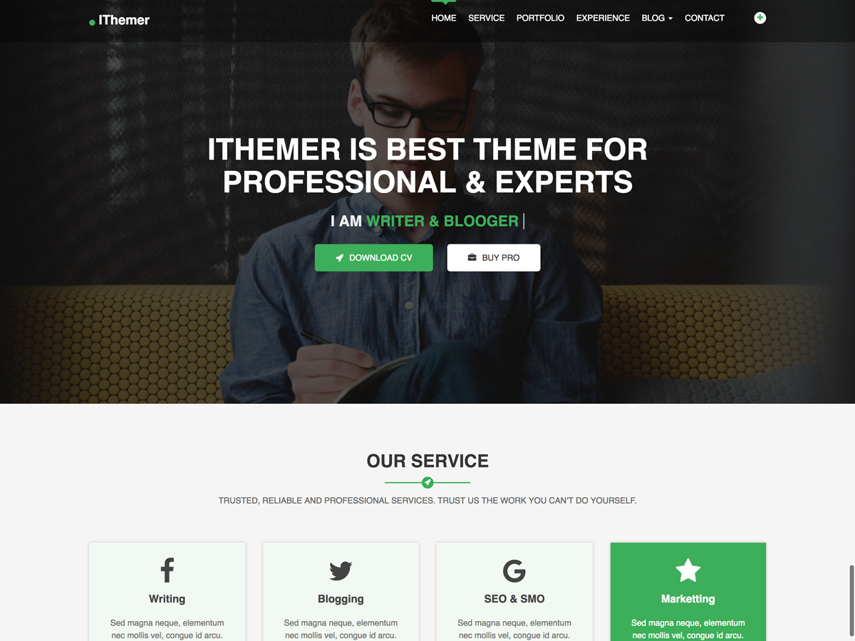 IThemer Preview Wordpress Theme - Rating, Reviews, Preview, Demo & Download