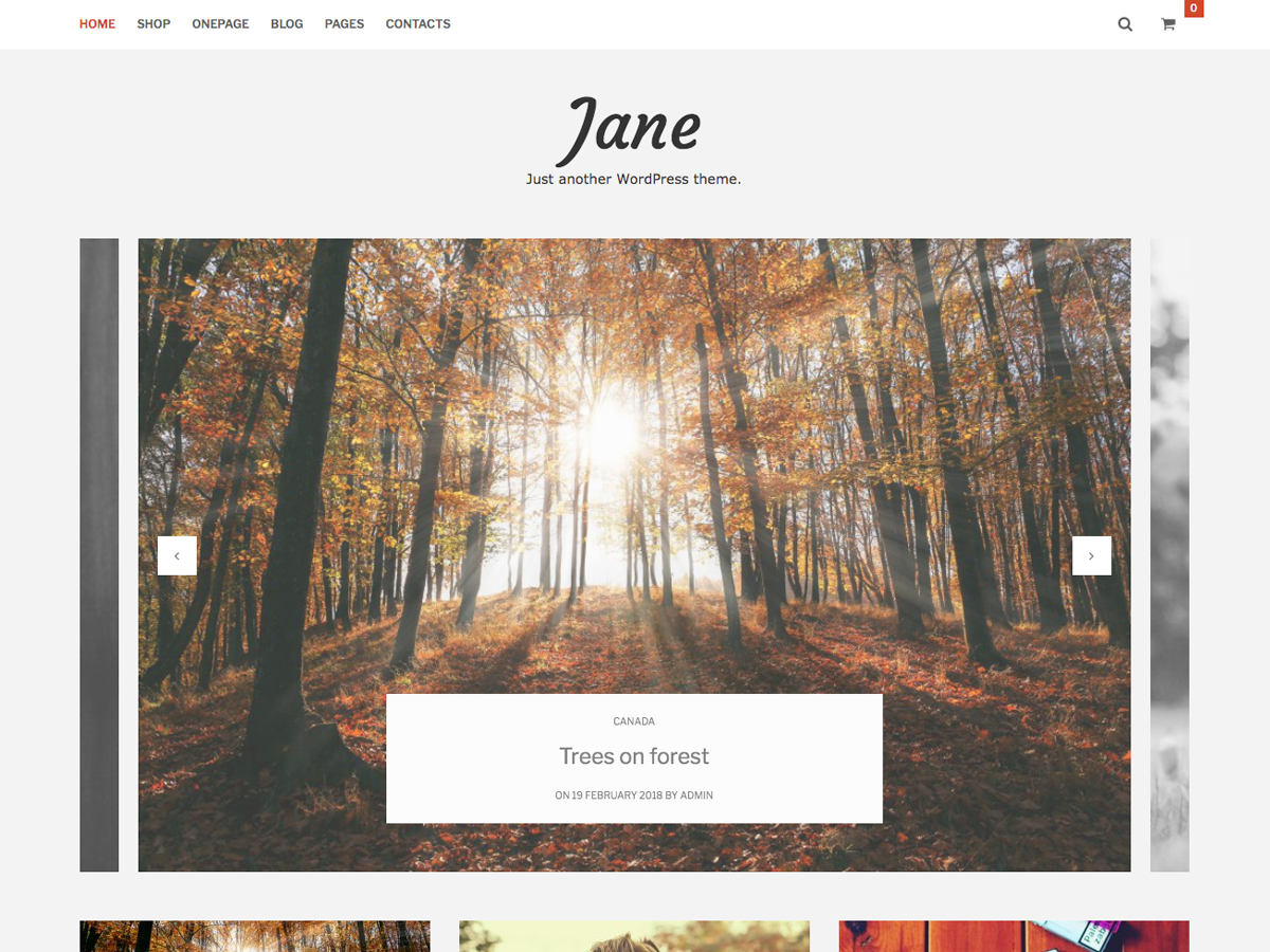 Jane Lite Preview Wordpress Theme - Rating, Reviews, Preview, Demo & Download