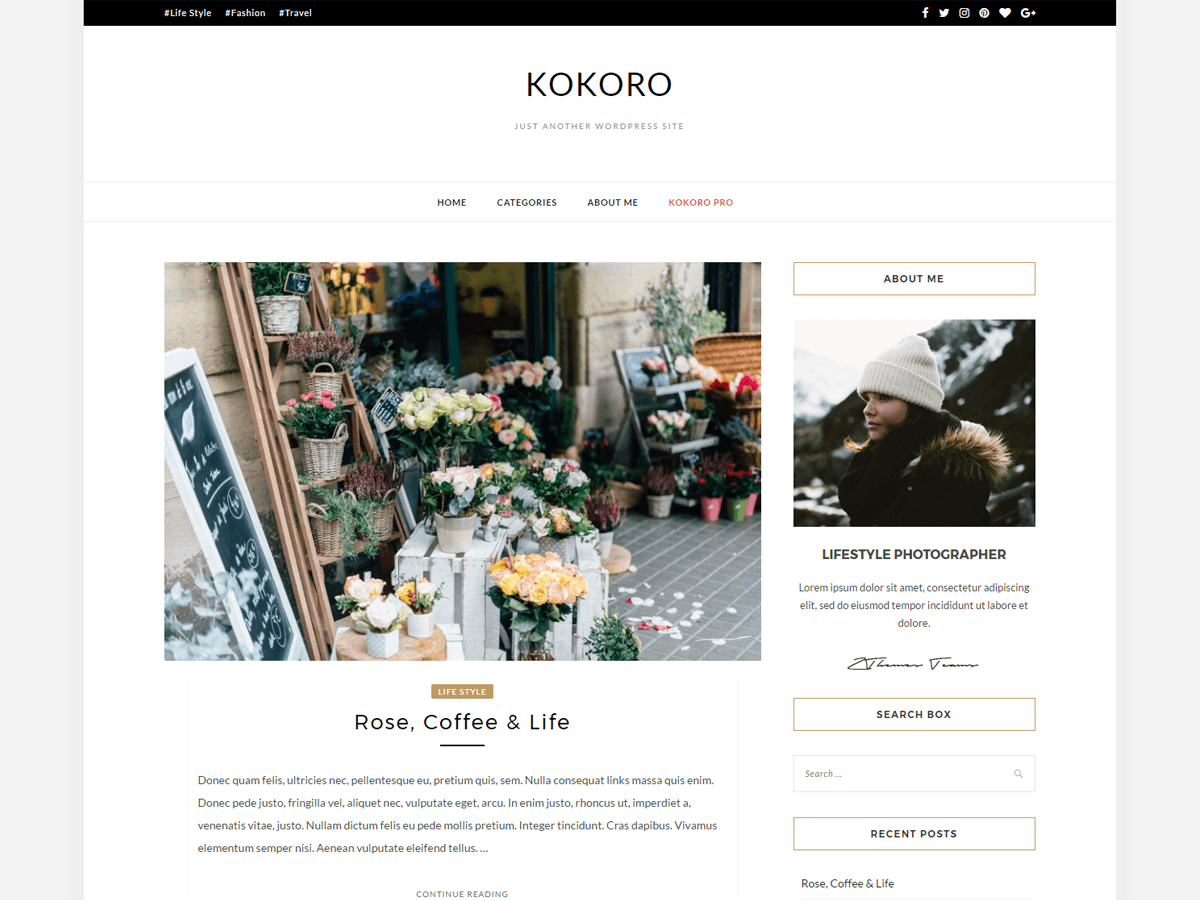 Kokoro Preview Wordpress Theme - Rating, Reviews, Preview, Demo & Download
