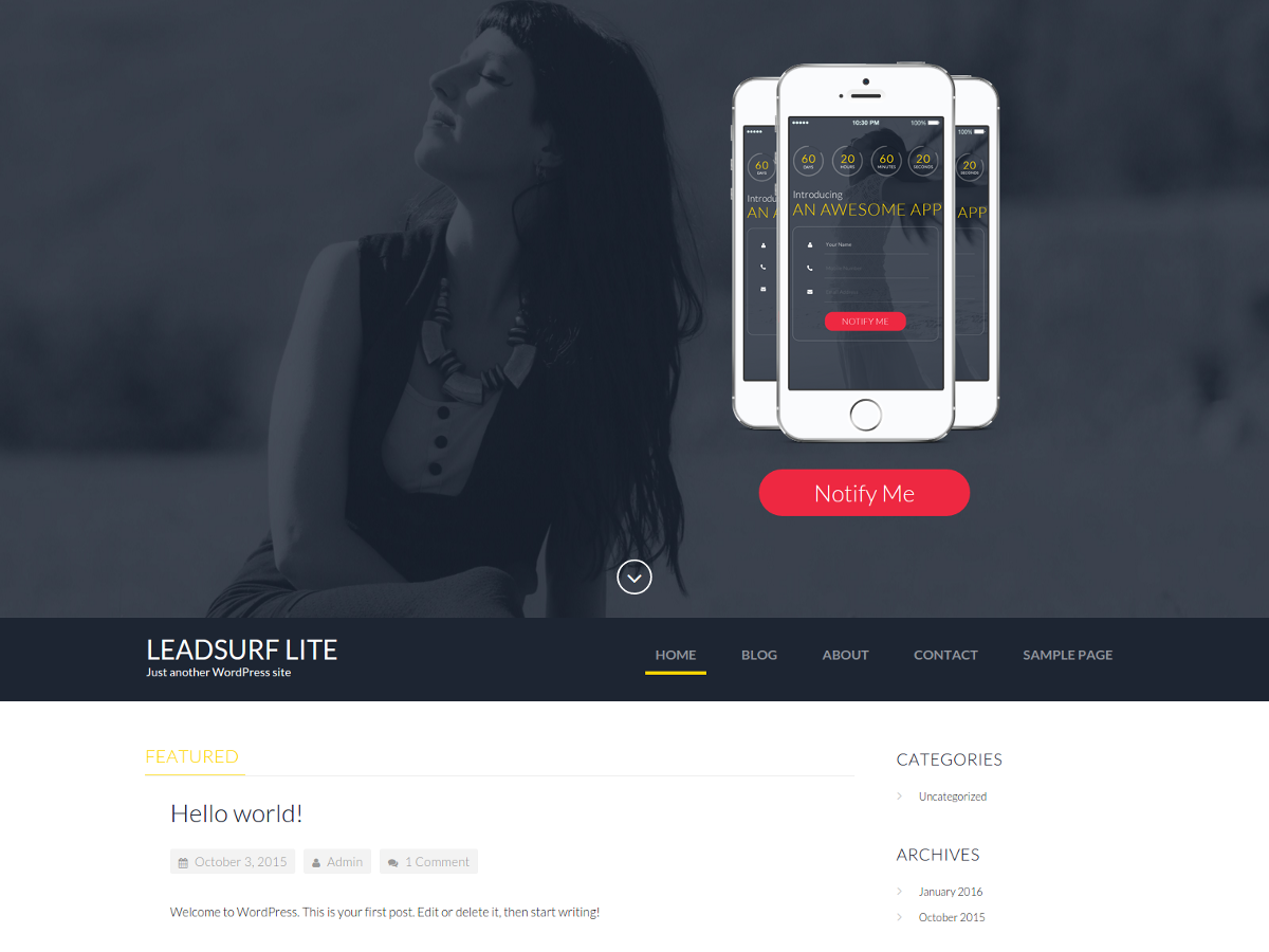 LeadSurf Lite Preview Wordpress Theme - Rating, Reviews, Preview, Demo & Download