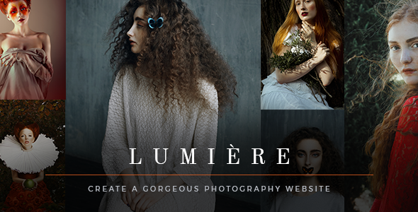 Lumi Preview Wordpress Theme - Rating, Reviews, Preview, Demo & Download