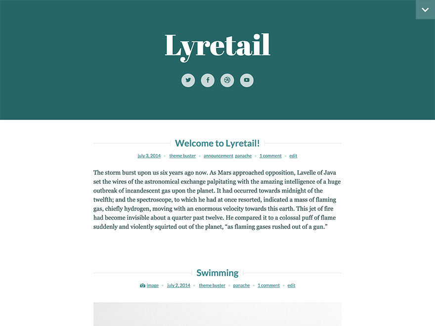 Lyretail Preview Wordpress Theme - Rating, Reviews, Preview, Demo & Download