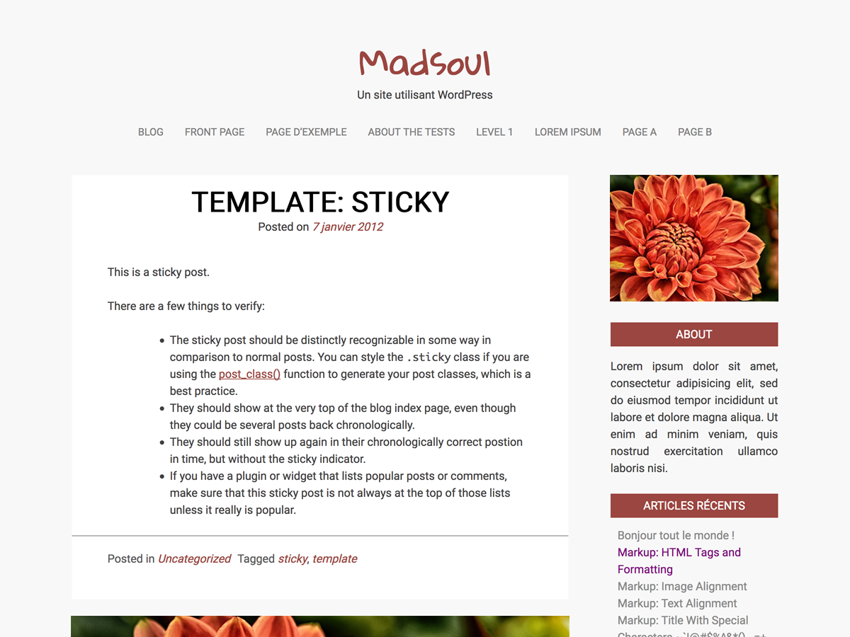 Madsoul Preview Wordpress Theme - Rating, Reviews, Preview, Demo & Download