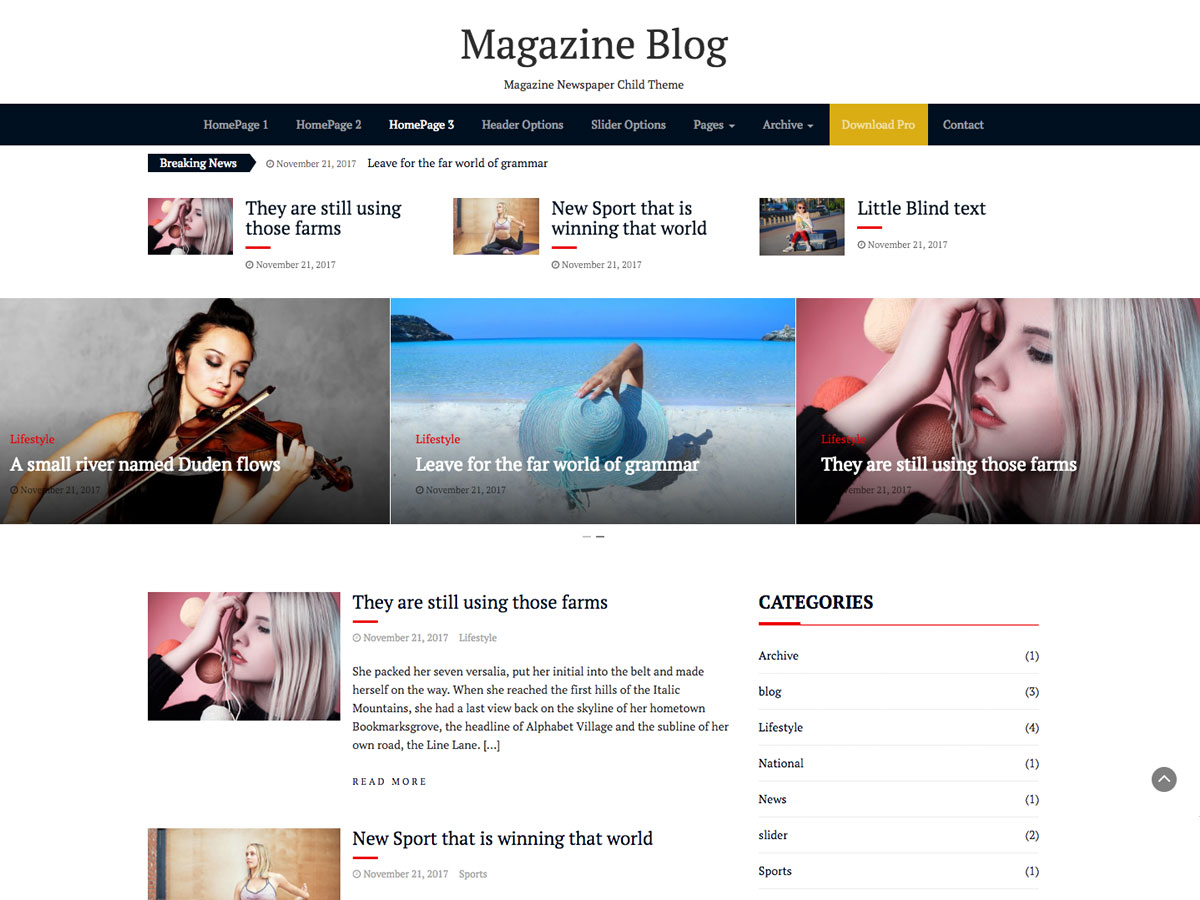 Magazine Blog Preview Wordpress Theme - Rating, Reviews, Preview, Demo & Download