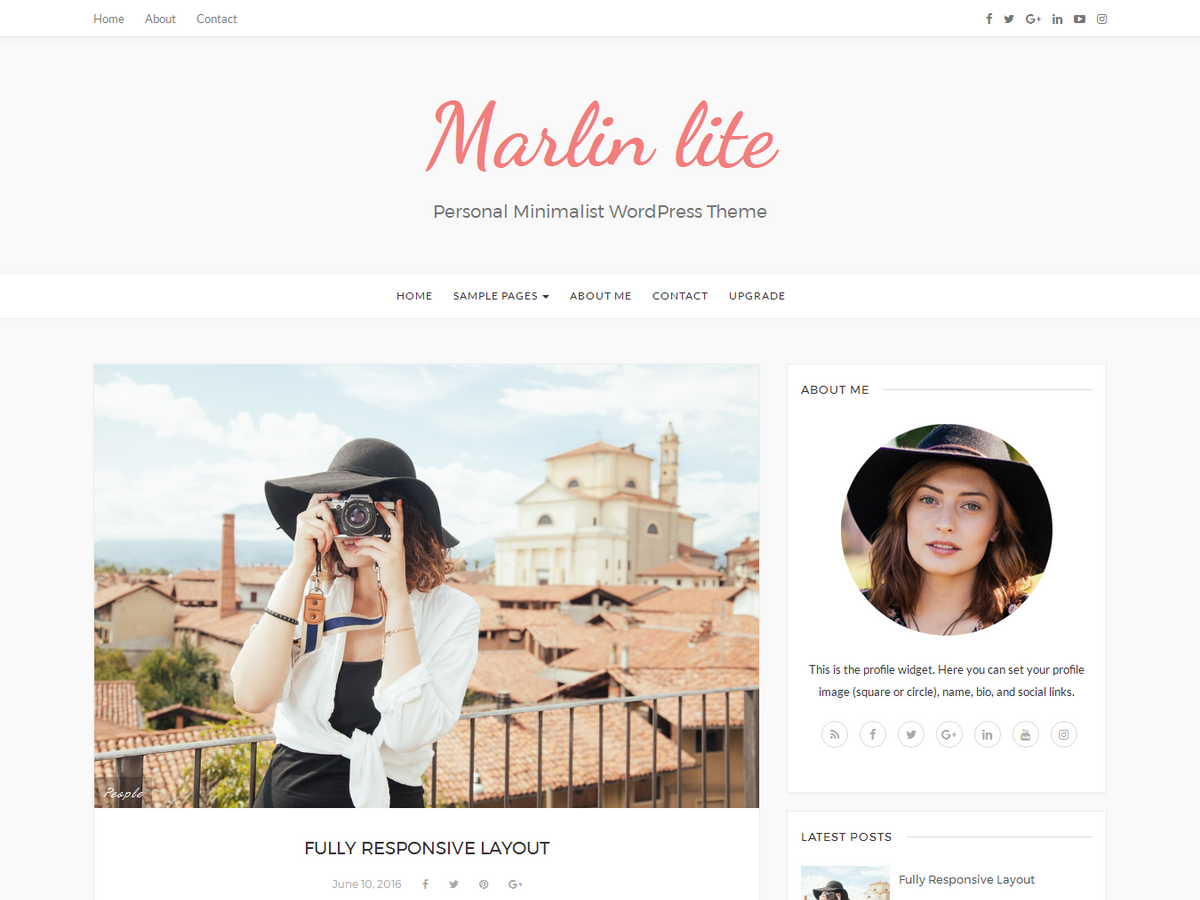 Marlin Lite Preview Wordpress Theme - Rating, Reviews, Preview, Demo & Download