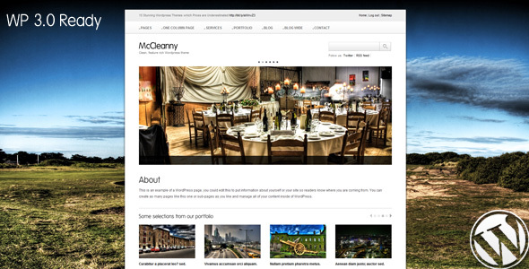 McCleanny Preview Wordpress Theme - Rating, Reviews, Preview, Demo & Download