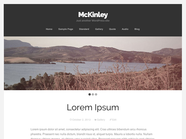 McKinley Preview Wordpress Theme - Rating, Reviews, Preview, Demo & Download