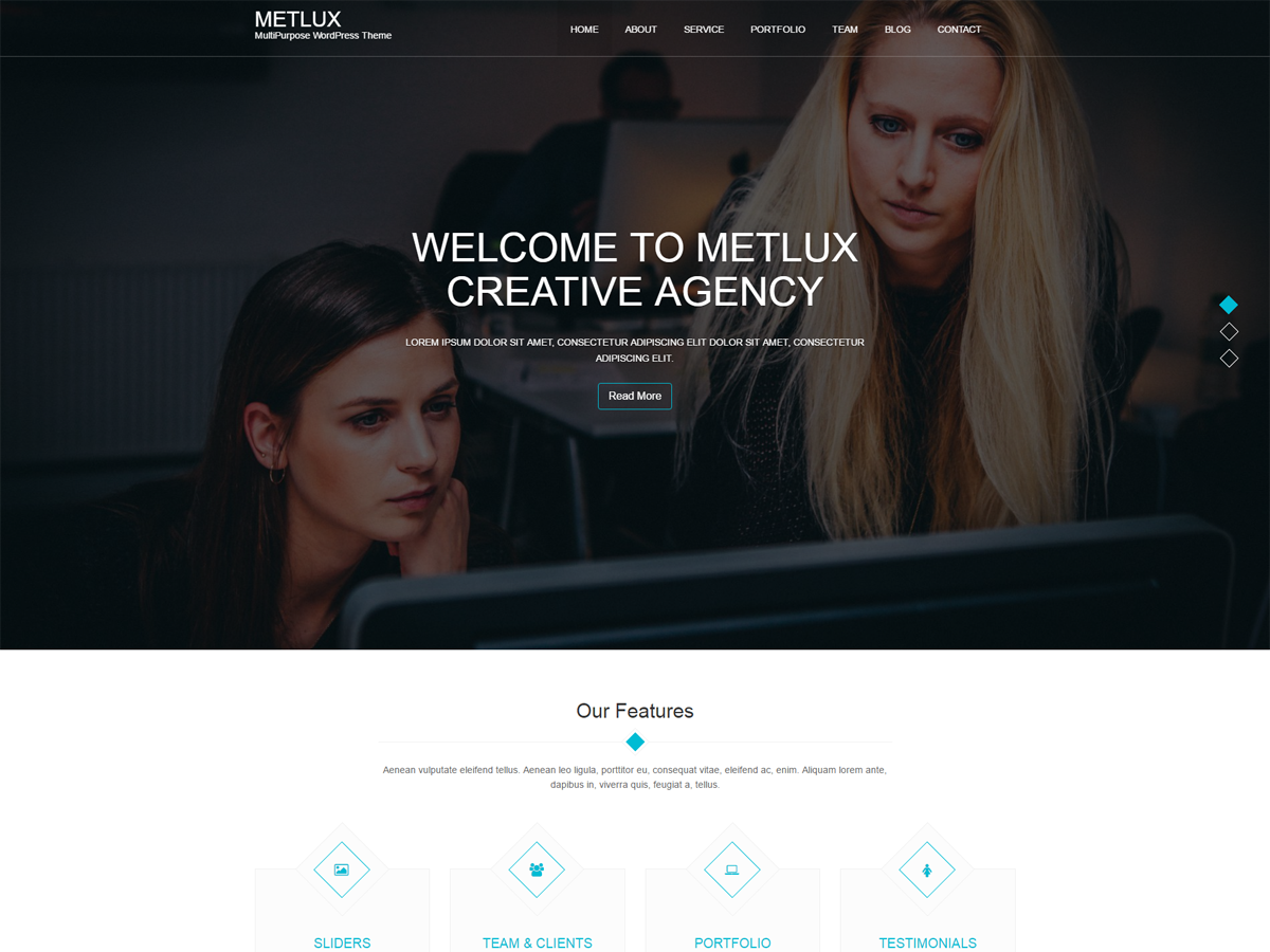 Metlux Preview Wordpress Theme - Rating, Reviews, Preview, Demo & Download