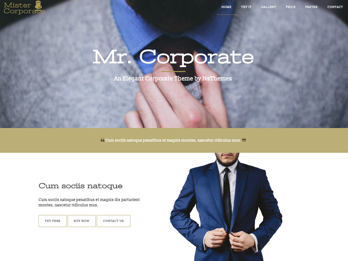Mistercorporate Preview Wordpress Theme - Rating, Reviews, Preview, Demo & Download