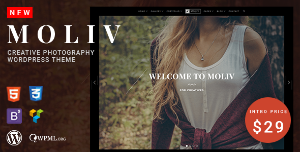 MOLIV Preview Wordpress Theme - Rating, Reviews, Preview, Demo & Download