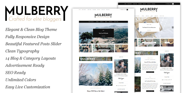 Mulberry Preview Wordpress Theme - Rating, Reviews, Preview, Demo & Download