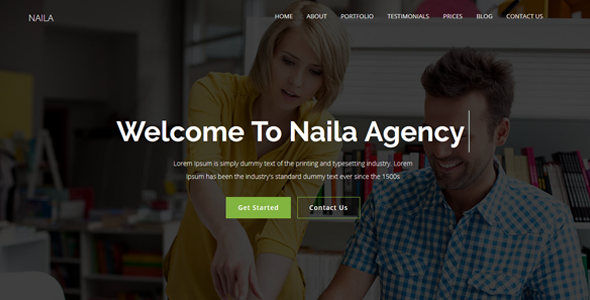 Naila Preview Wordpress Theme - Rating, Reviews, Preview, Demo & Download