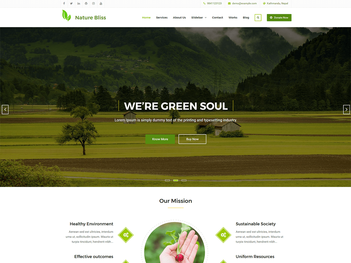 Nature Bliss Preview Wordpress Theme - Rating, Reviews, Preview, Demo & Download